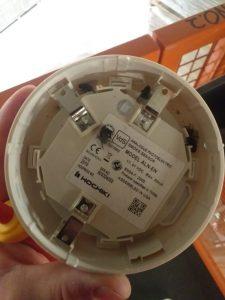 Flies inside a smoke detector
